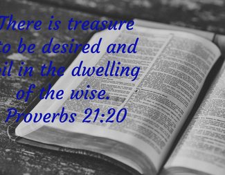 Search proverbs 21 20