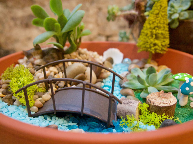 For All Ages: Fairy Garden Workshop