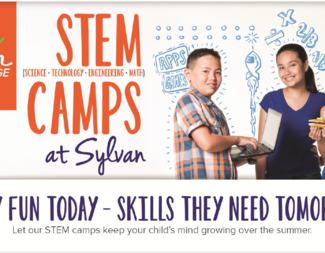 Search stem camp header