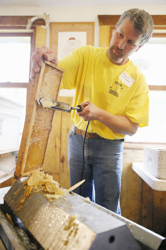 Adam Schrader of Marion removes the capping so honey can be extracted from the comb during a demonstration Honey Fest 2014 at the Indian Creek Nature Center in Cedar Rapids on Sunday, September 21, 2014. (file photo)
