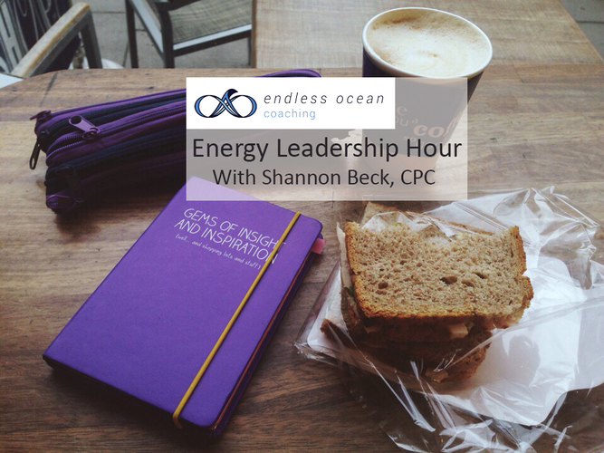 Energy Leadership Hour: Holiday Rebound--build a unified team