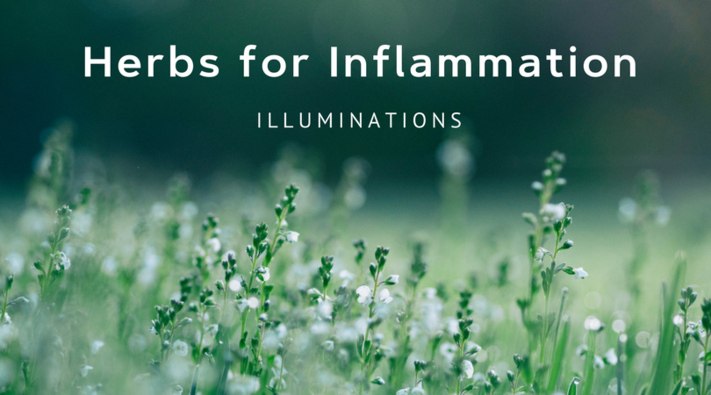 Herbs for Inflammation Week 2