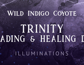 Search trinity healing   reading day