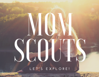 Search momscouts