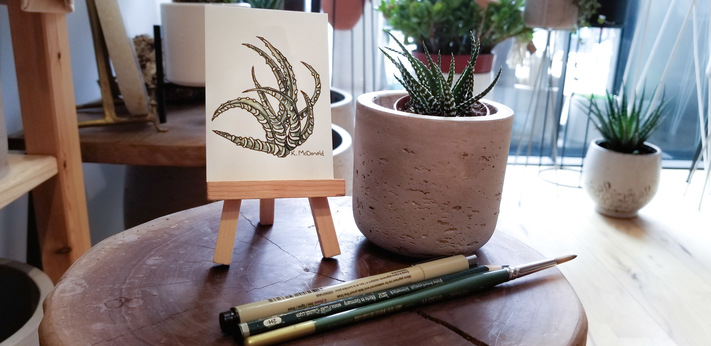 Sip & Plant: Painting Watercolor Succulents