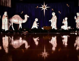 Search nativity