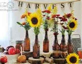 Search harvest pic  2